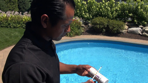 Pool Professional Holding pH Test Strips