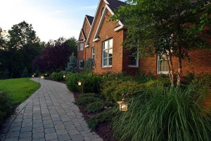 foundation plantings soften a home's hard edges