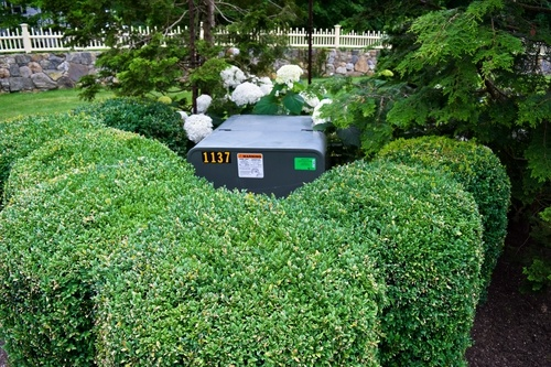 using shrubs to hide objects in your yard